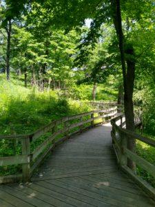 boardwalk trail at Fontanelle Forest